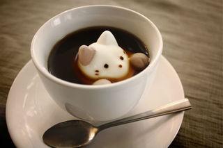 nekocafee.jpg