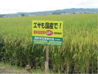 shiryomai01.jpg