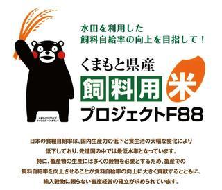 shiryomai02.jpg